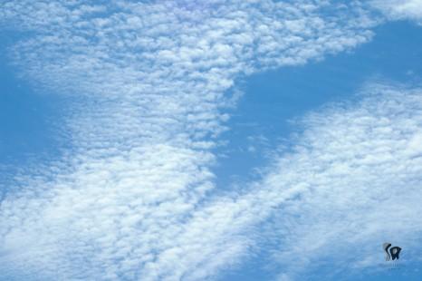 clouds-amongst-blue